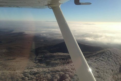 flycoop117