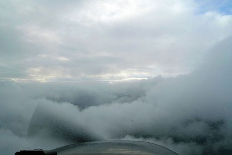 flycoop124